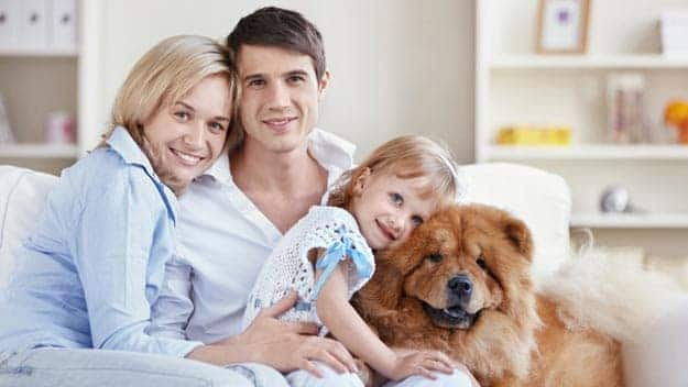 Wills & Trusts dog-young-family Direct Wills Didcot